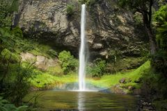 Queda nupcial Nova Zelândia Fotografia de Stock Royalty Free