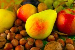 A queda nuts das uvas da maçã da pera madura frutifica nas folhas Imagem de Stock