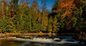 Quedas ásperas Muskoka rio acima Imagens de Stock Royalty Free