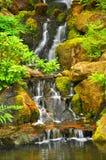 Quedas da água Fotos de Stock Royalty Free