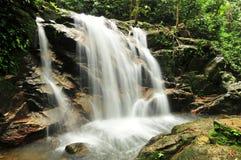 Quedas da água do parque de Templer Foto de Stock Royalty Free