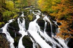 Quedas da andorinha, Gales norte, Snowdonia Fotos de Stock