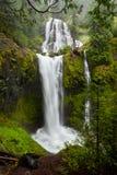 Quedas da angra das quedas, Washington State imagens de stock royalty free