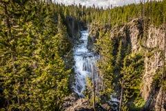 Quedas da cascata, parque nacional de Yellowstone Fotografia de Stock Royalty Free