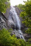 Quedas da porca de hicória quadro pela folha da mola no parque estadual da rocha da chaminé em North Carolina imagens de stock