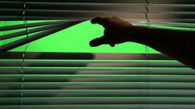 Quedas da sombra no jalousie quando uma pessoa os levantar acima Tela verde video estoque