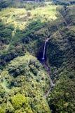 Quedas de Akaka, console grande, Havaí Imagem de Stock Royalty Free