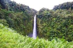 Quedas de Akaka no parque estadual das quedas de Akaka, ilha grande, Hava?, EUA imagens de stock