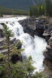 Quedas de Athabasca fotografia de stock