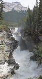 Quedas 4379 de Athabasca Fotos de Stock Royalty Free