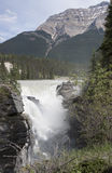 Quedas 4389 de Athabasca Imagem de Stock Royalty Free