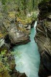 Quedas de Athabasca Imagem de Stock Royalty Free