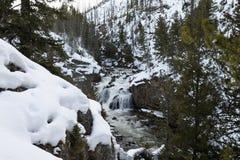 Quedas de Firehole, inverno, Yellowstone NP Foto de Stock Royalty Free