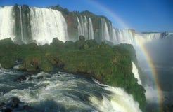 Quedas de Iguacu Foto de Stock