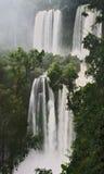 Quedas de Iguassu, Argentina Fotos de Stock