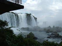 Quedas de Iguassu, Brasil Imagem de Stock