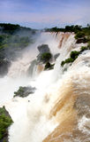 Quedas de Iguazzu Imagem de Stock Royalty Free