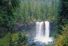 Quedas de Koosah, Oregon Imagens de Stock