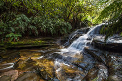 Quedas de Leura, montanhas azuis, Austrália Fotos de Stock