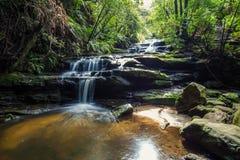 Quedas de Leura, montanhas azuis, Austrália Fotos de Stock Royalty Free