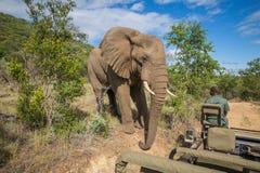 Quedas de Mzkuze - África do Sul Foto de Stock Royalty Free