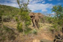Quedas de Mzkuze - África do Sul Imagem de Stock
