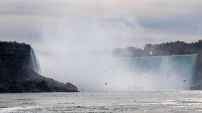 Quedas de Niagra vistas de um barco com milhares de pássaros na parte dianteira fotos de stock royalty free
