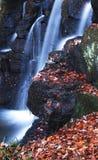 Quedas de novembro Foto de Stock Royalty Free