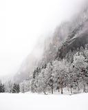 Quedas de Truemmelbach - inverno foto de stock
