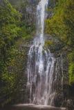 Quedas de Wailua Fotos de Stock