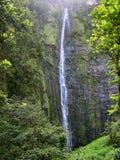 Quedas de Waimoku, Maui Fotos de Stock