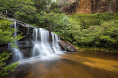 Quedas de Wentworth, montanhas azuis, Austrália Fotos de Stock Royalty Free