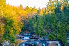 Quedas do Blackwater, West Virginia imagens de stock royalty free