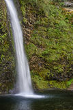 Quedas do Horsetail, área cênico nacional do desfiladeiro do Rio Columbia, lavagem Imagens de Stock