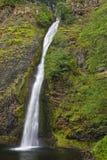 Quedas do Horsetail, área cênico nacional do desfiladeiro do Rio Columbia, lavagem Imagem de Stock Royalty Free