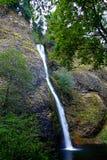 Quedas do Horsetail de Oregon Imagem de Stock