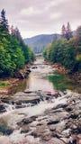 Quedas do rio imagem de stock
