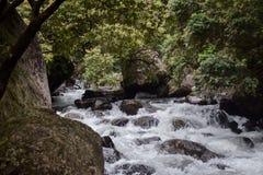 Quedas do rio Imagens de Stock