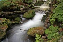 Quedas em Carpathians Foto de Stock
