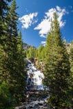 Quedas escondidas no parque nacional grande de Teton, Wyoming, EUA Fotografia de Stock Royalty Free