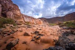 Quedas grandes o Arizona Imagem de Stock Royalty Free