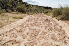 Quedas grandes secas o Arizona Imagem de Stock