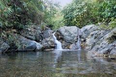 Quedas na selva de Palawan da ilha Imagem de Stock Royalty Free