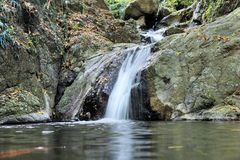 Quedas na selva de Palawan da ilha Fotografia de Stock Royalty Free