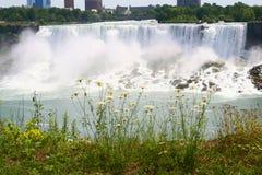 Quedas Niagara Falls do americano Fotografia de Stock