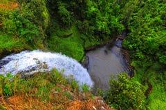 Quedas nupciais do véu de Nova Zelândia - parque natural imagem de stock royalty free