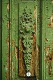 Quedas pequenas em um arvoredo, a selva verde Imagens de Stock Royalty Free
