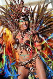 Queen of the Bateria in the Brazilian Carnival Stock Photos