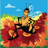 The Queen Bee. A Confident Queen Bee sits on a field of flowers Stock Images