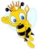 Queen bee. Illustration of a queen bee Stock Photos